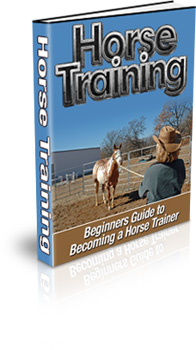 Horse Training Book Cover